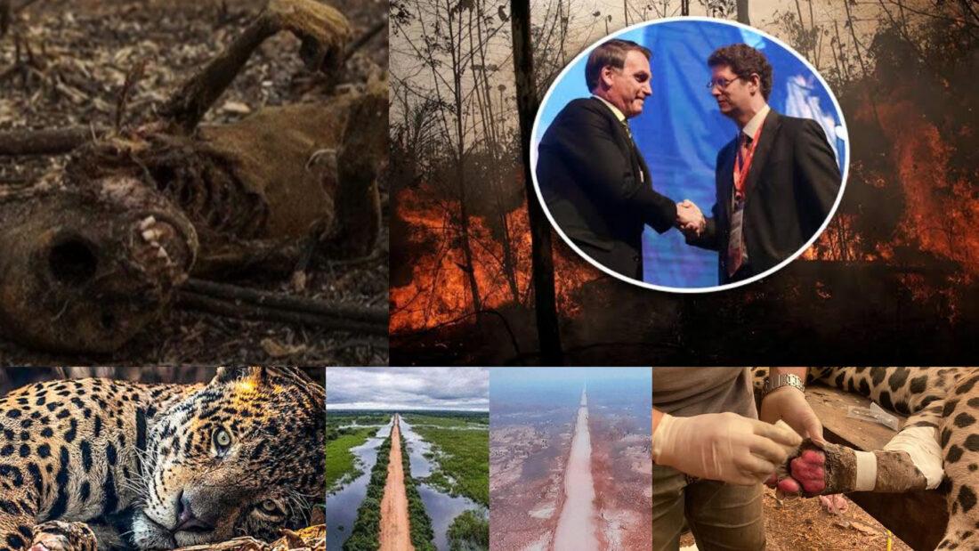 Quem são os latifundiários que incendiaram e destruíram parte do Pantanal com aval de Jair Bolsonaro e Ricardo Salles